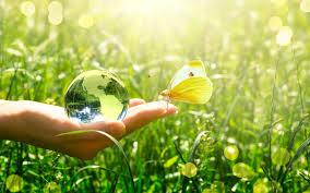 Quels sont les principaux métiers de l'environnement ?